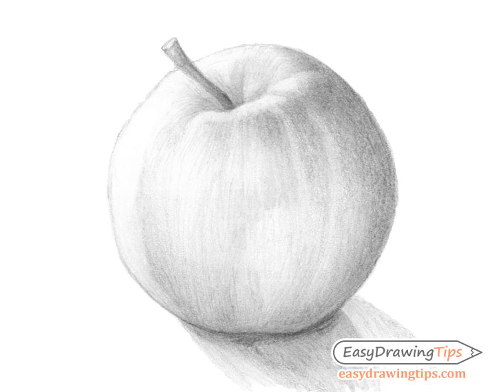 Apple shaded drawing