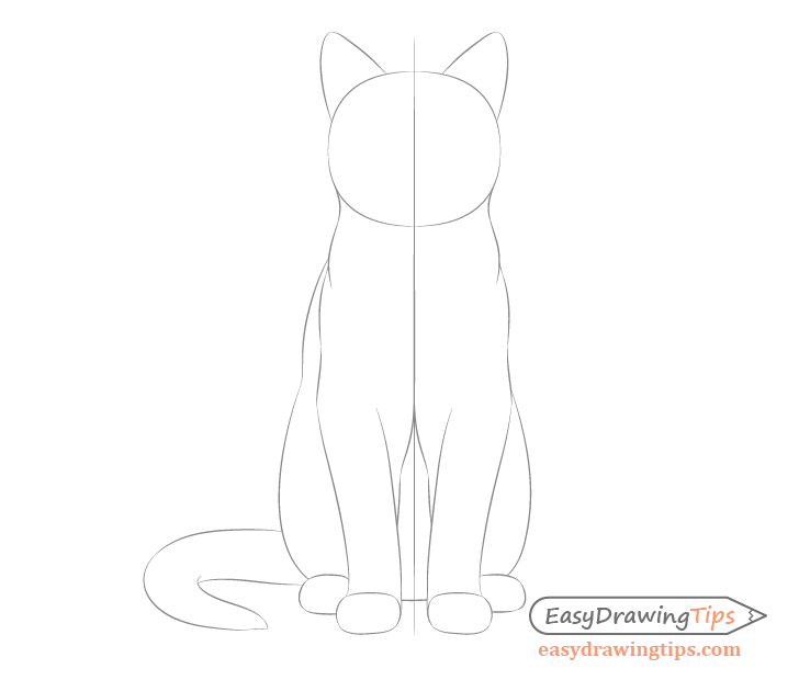 Cat sitting front view body sketch