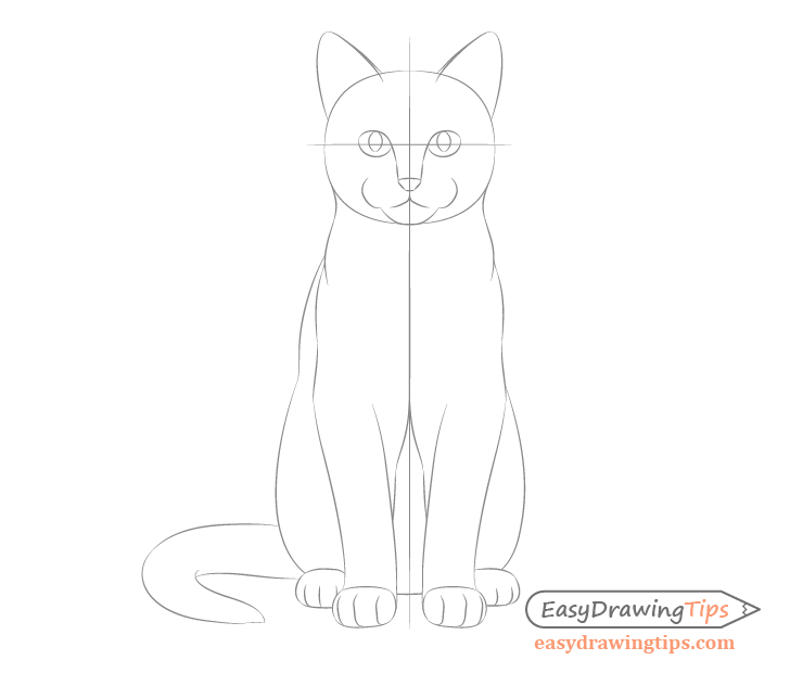 Cat sitting front view details sketch