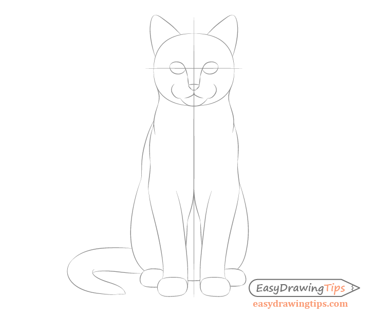 Cat sitting front view face proportions sketch