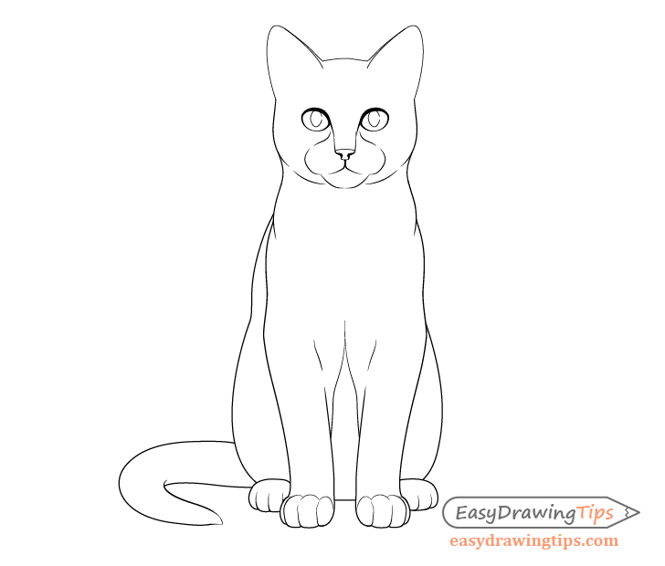 Cat sitting front view outline drawing