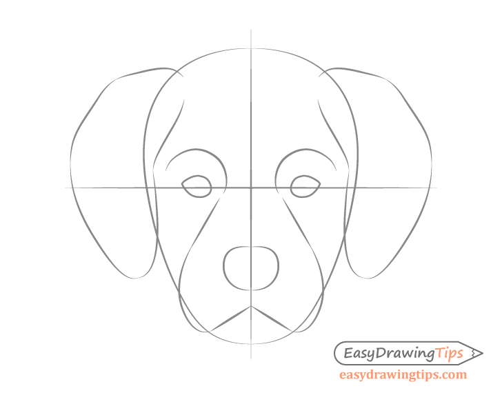 Dog head front view details sketch