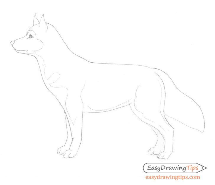 Outline dog drawing