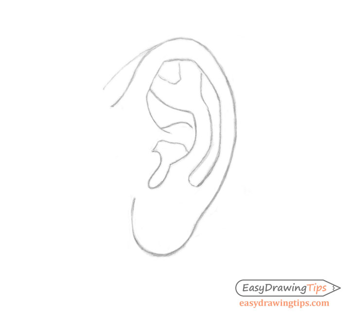 Ear side view outline drawing