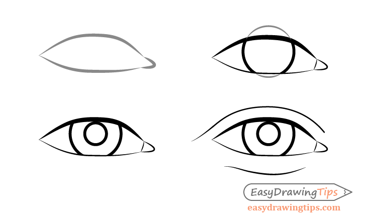 Male eye front view drawing step by step