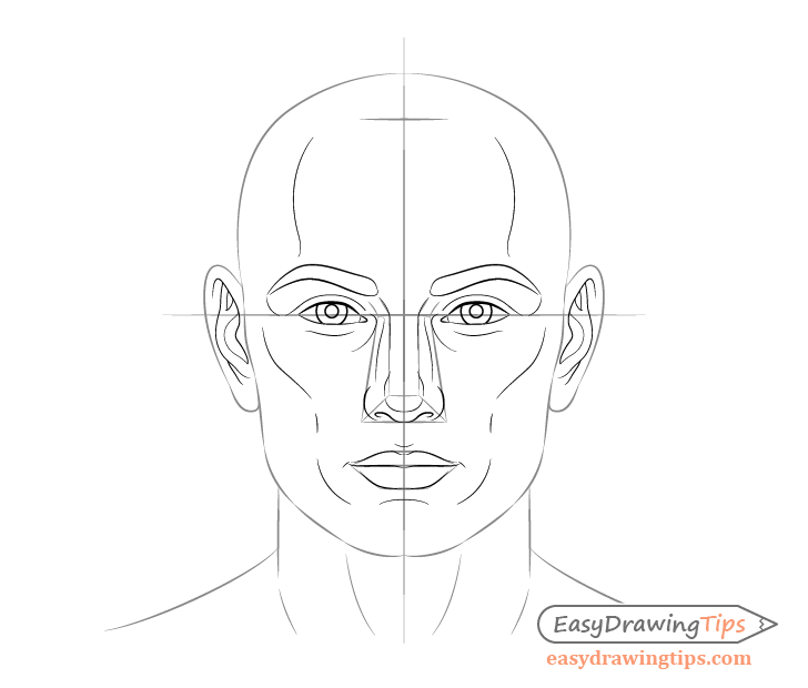 Male face facial features drawing