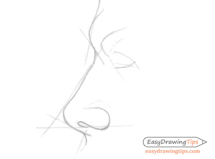 Nose side view outline drawing