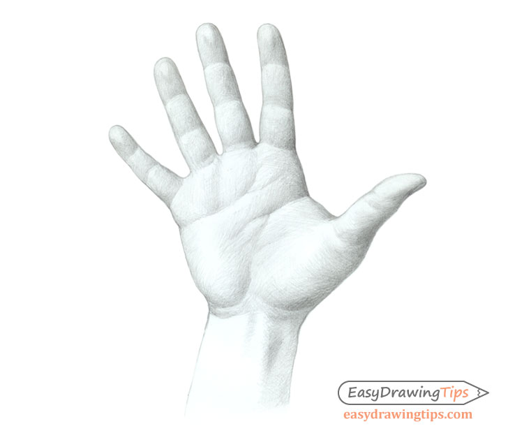 Hand open palm drawing