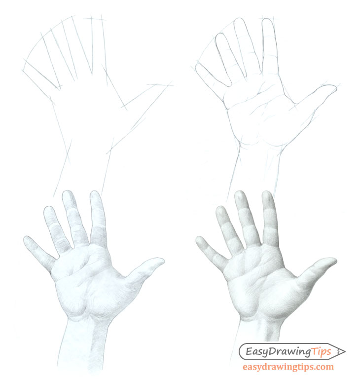 Hand drawing step by step
