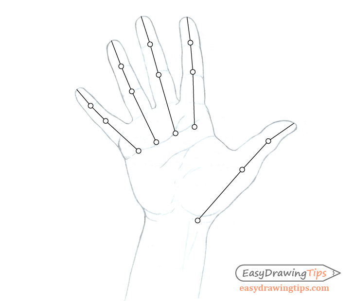Hand finger and thumb structure