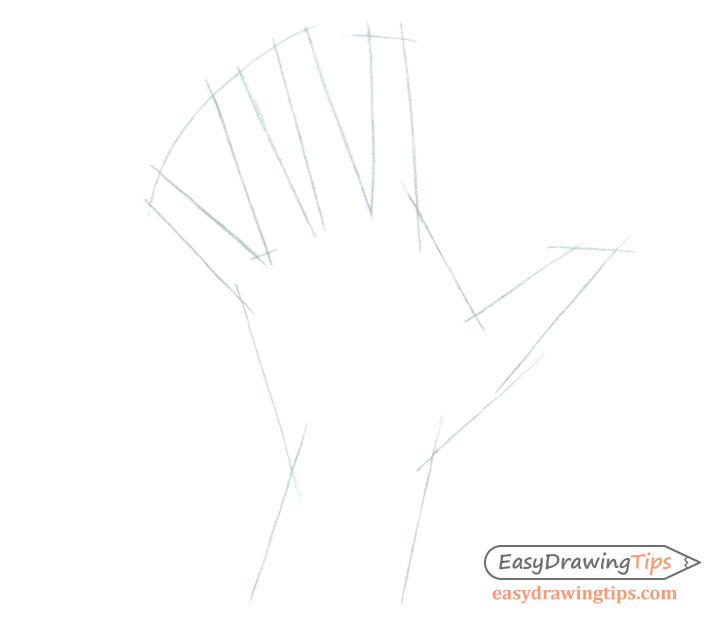 Hand shape sketch
