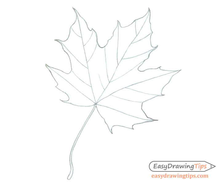 how to draw leaves easy