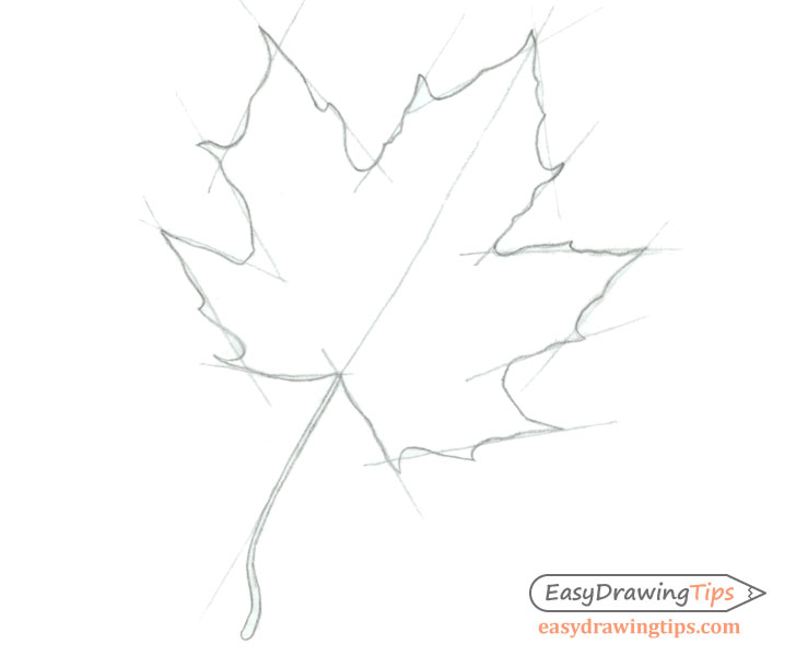 Maple leaf outline drawing