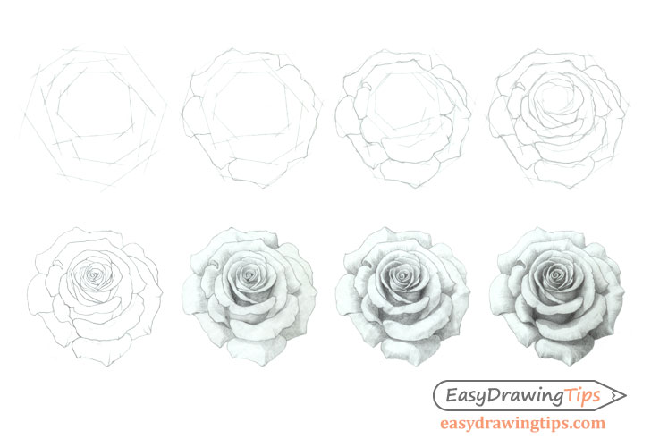how to draw a rose step by step tutorial easydrawingtips