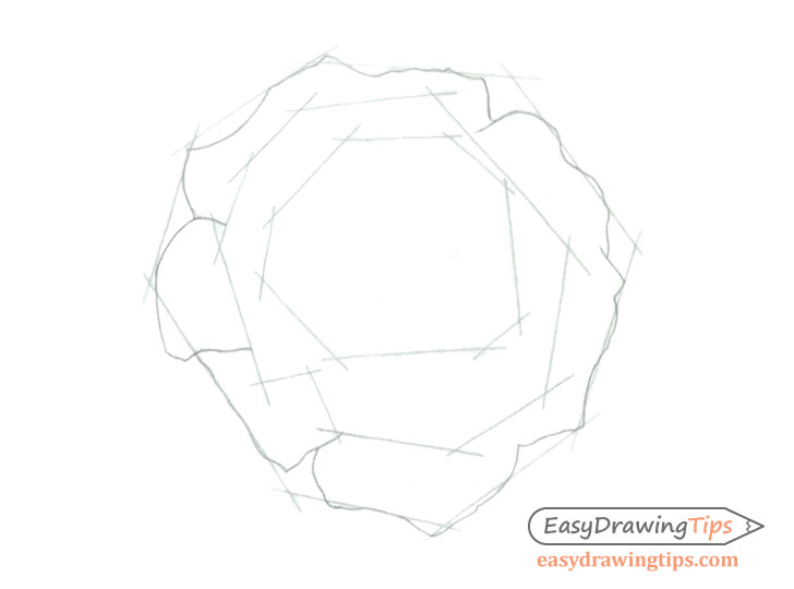 Rose outer petals drawing