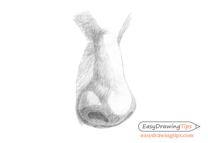 Nose three quarter view basic shading
