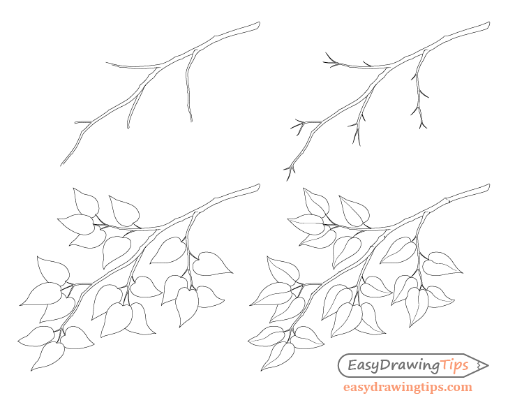Branch with leafs step by step drawing