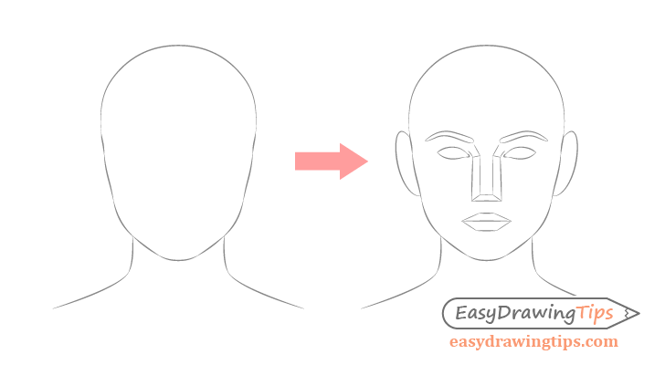 Face drawing shape to details