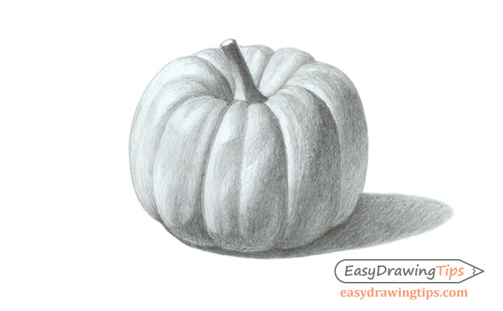 Realistic pumpkin drawing