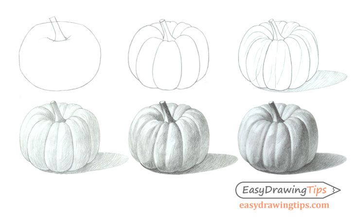 Pumpkin drawing step by step