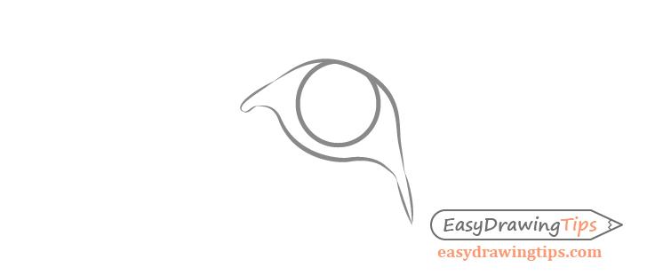 Lion eye shape drawing