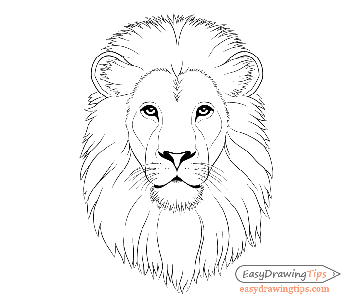 How To Draw Lion Face Head Step By Step Easydrawingtips Download 1,700+ royalty free lion eyes vector images. to draw lion face head step by step