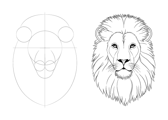 Lion face drawing tutorial