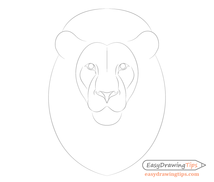 Lion face shape drawing