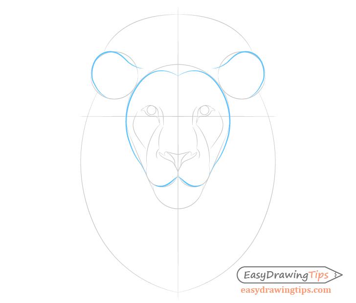 Lion face shape lines
