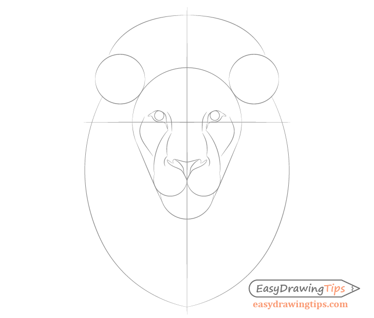 How To Draw Lion Face Head Step By Step Easydrawingtips Check out our cartoon drawing lesson how to draw a lion face if you want to make a realistic looking drawing. to draw lion face head step by step