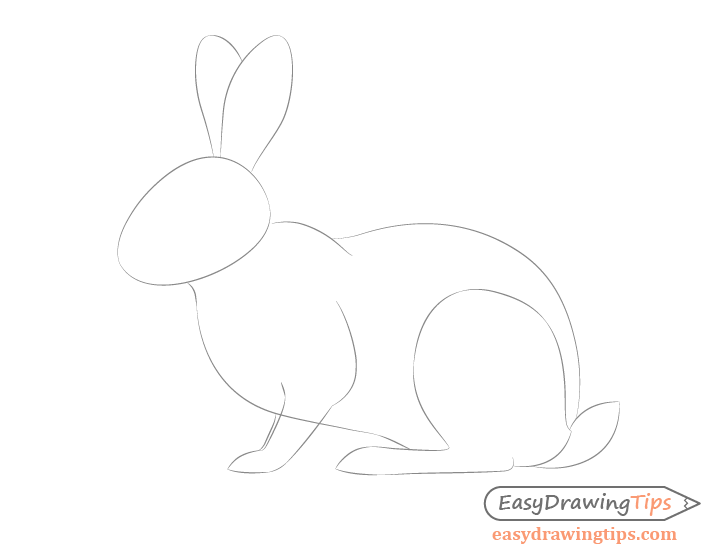 Rabbit full body drawing