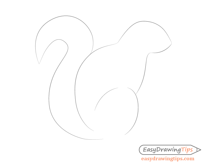 Squirrel tail drawing side view