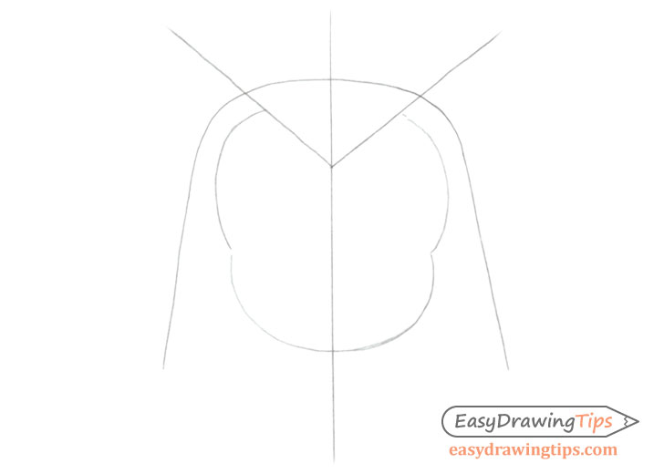 Owl face construction lines