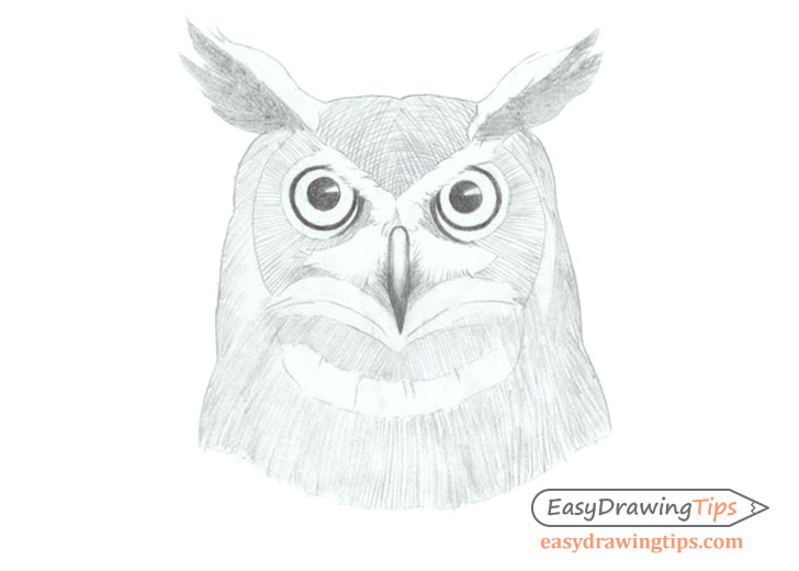 Owl face drawing basic shading