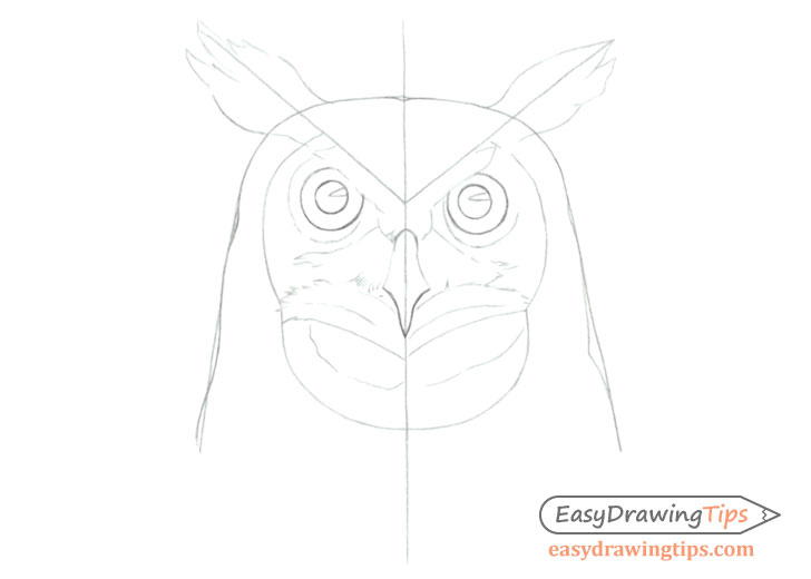 Owl face line drawing with construction lines
