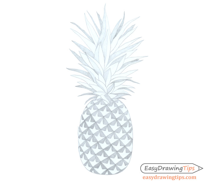 Pineapple drawing basic shading