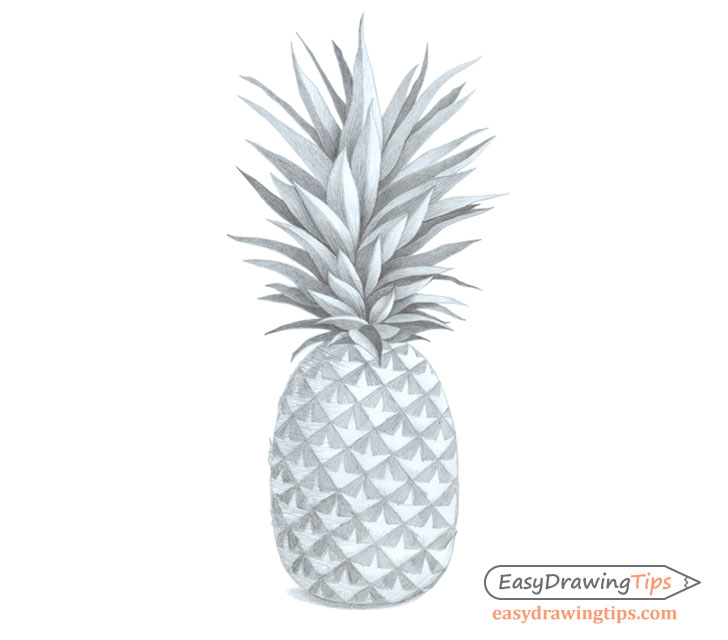 How To Draw A Realistic Pineapple Step By Step Easydrawingtips