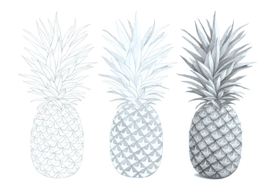 Pineapple drawing tutorial