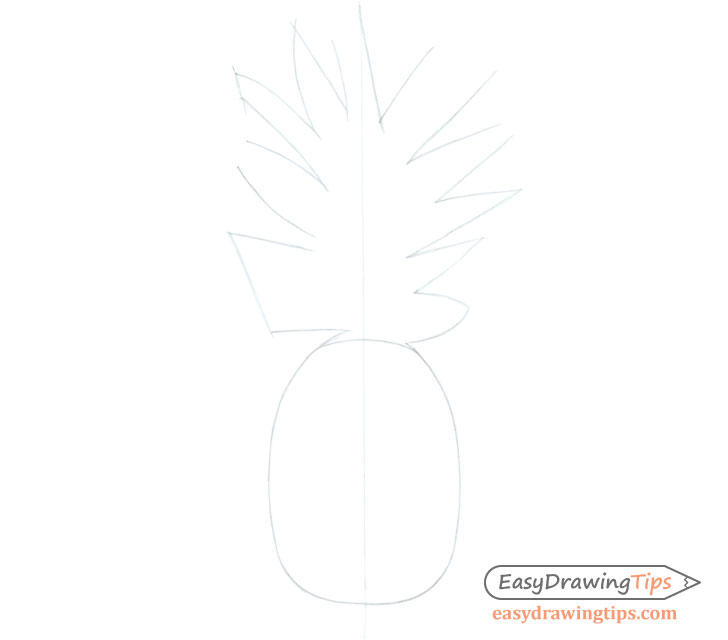 Pineapple shape sketch