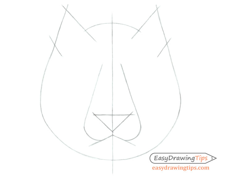 Tiger face drawing construction lines