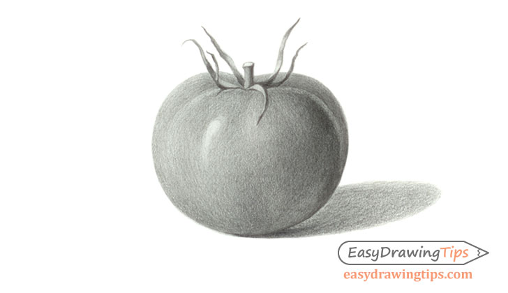 Tomato drawing