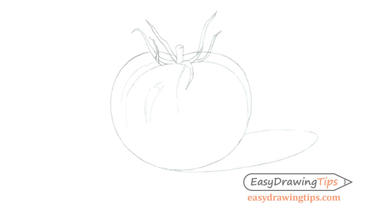 Tomato line drawing