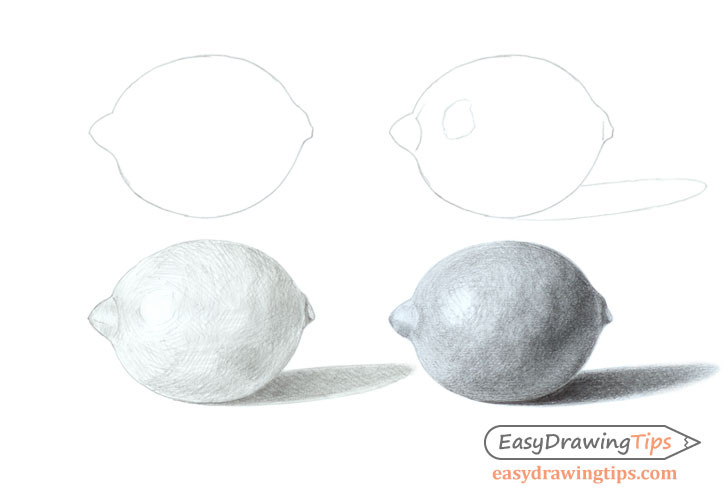 Lemon drawing step by step