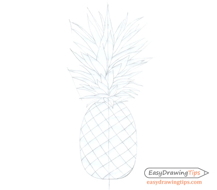 Pineapple basic line drawing