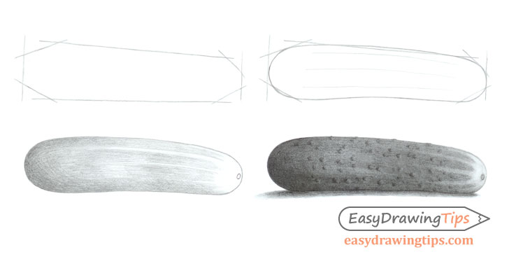 Cucumber drawing step by step
