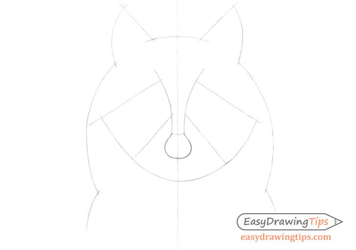 Raccoon face construction line drawing