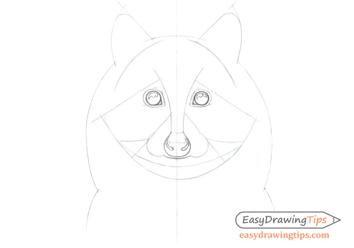 Racoon face line drawing