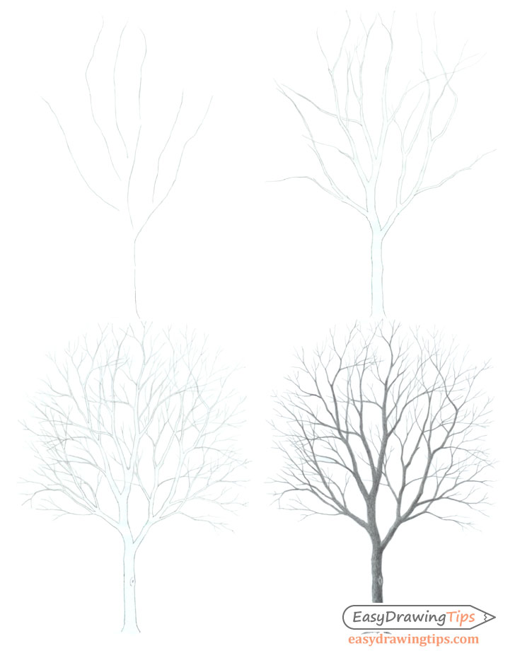 Tree drawing step by step