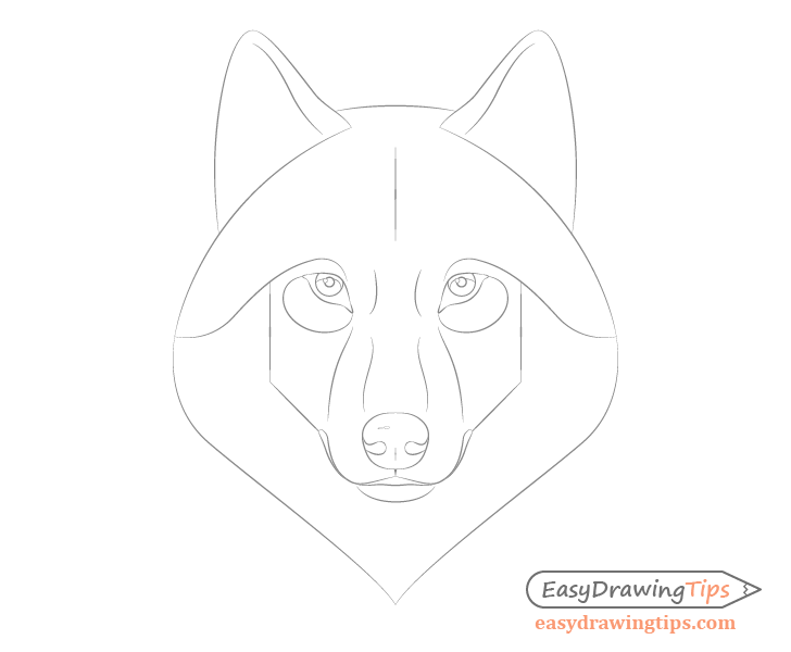 Wolf face details drawing