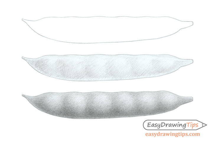 Bean pod drawing step by step
